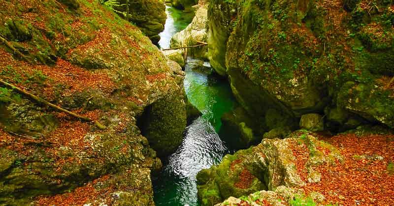 Корито реке Мостнице