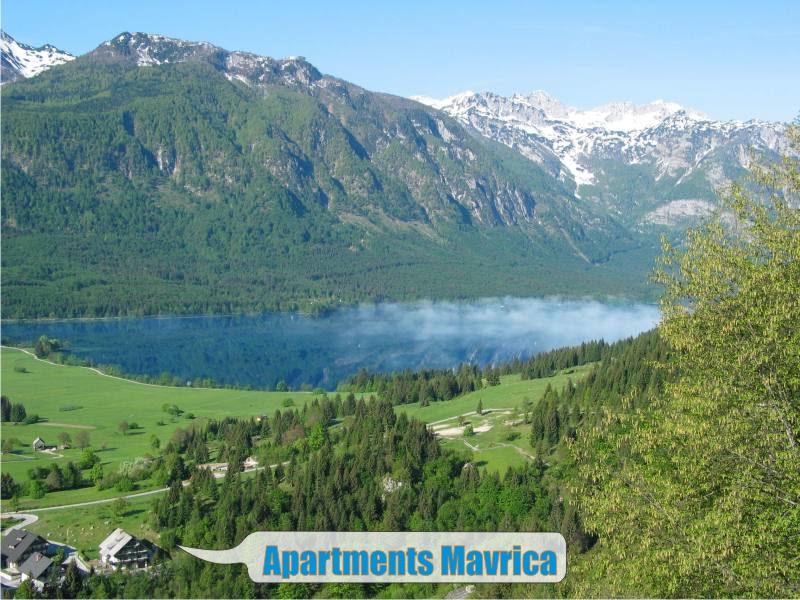 Apartments Mavrica,lake,Vogel - Copy